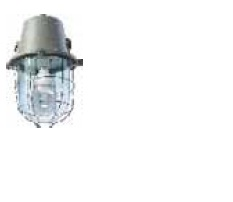 bajaj Wellglass luminaire for retrofit induction lamp.jpg